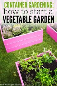 container gardening how to start a