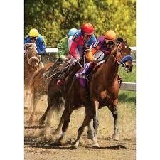 carolina panthers garden flag. Race Horse - Garden Flag Carolina Panthers R