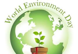 green environment essay environmental essay contest for barbadian students green antilles
