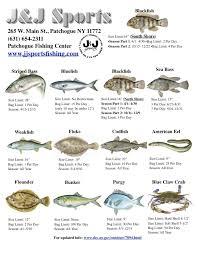 Regulations 2019 Jjsportsfishing Com