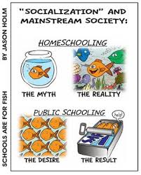 how two decades of socialization has ruined you the mission  one of the silliest arguments against homeschooling and unschooling is that children educated these ways won t be socialized to this argument we pose one