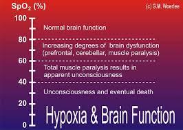 Blood Oxygen Level Chart Body 20 Unique Oxygen Saturation Chart