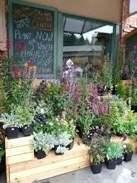 garden nursery near my location idea of chalkboard sign daily special looks nice garden center near