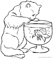 Cat Looking At A Fish Color Page Free Printable Coloring Sheets For