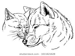 cats and dogs in love drawing. Modren Cats Dog And Cat Love In Cats And Dogs Love Drawing 2