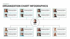 Organization Chart Organization Chart Infographics Powerpoint And Keynote Template 3