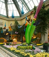 bellagio s conservatory botanical gardens has gorgeous erflies both real and made out of flowers