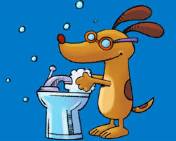 bridger the water loving dog teaches kids how and why to wash their hands in