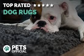 best dog rugs er s guide 2018