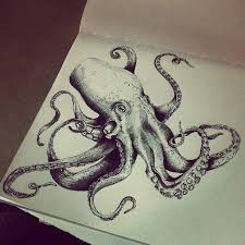 Small Picture Octopus Drawing Tumblr