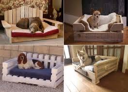 dog trundle bed. Exellent Trundle Dog Pallet Bed To Dog Trundle Bed S