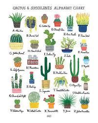 Succulent Size Chart Cactus Succulents Alphabet Chart Art Print In 2019