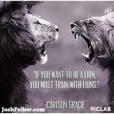 Quotes About Leadership And Teamwork Adorable Wright Thurston On Twitter If You Want To Be A Lion