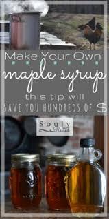 Backyard Maple Syrup
