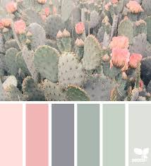 pastel paint colorsMental Vacation  Colour images Cacti and Combination colors