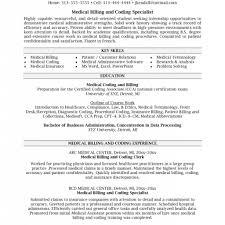 Medical Biller Job Description Resume Resume Examples Medical Biller Resume Sample Resume Sample For 12