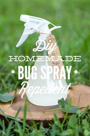 a super easy homemade bug spray that only requires 4 ings this effective diy bug