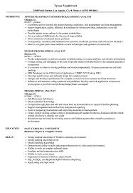 Programming Analyst Resume Samples Velvet Jobs