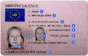 Drivercheck Checks Licence Photocard Driver Explained Fleet Grey Driving