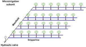 Trickle Irrigation Systems Design Dimsub A Computer Program For Designing Microirrigation