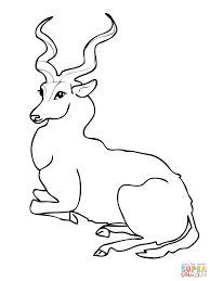 Small Picture Kudu Forest Antelope coloring page Free Printable Coloring Pages