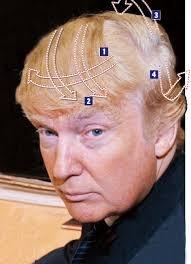 Resultado de imagen de Macleod Trump