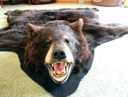 bear head rug bear rug fake faux head bear rug bear rug taxidermy wisconsin taxidermy bear bear head rug faux