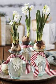 Paper White Flower Bulb Paperwhite Bulb Gifts Are Perfect For The Holidays Southern Living