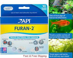 Fish Medication Chart Api Fungus Cure Freshwater Fish Powder Medication New