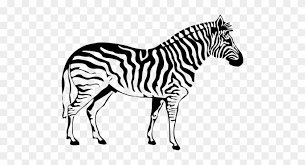 It also includes information about different species of zebra. Siluet Zebra Zebra Coloring Pages Free Transparent Png Clipart Images Download