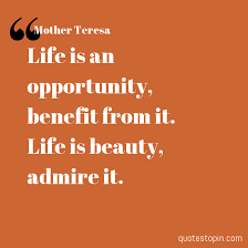 Mother Teresa Quotes Life Awesome Mother Teresa Quotes Quote Life Is An Opportunity Benefit From