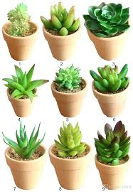 office flower pots. Decorative Indoor Plant Containers Artificial Retro Ceramic Pots With Green Succulents Planters Table Office Flower