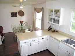 Painting Kitchen Cabinets White Splendid Design Inspiration 24 Paint