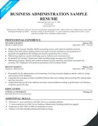 Salesforce Developer Resume Admin Developer Resume Fl Hire It People Magnificent Salesforce Resume