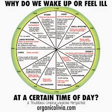 Tcm Time Chart Tcm Body Clock Why Do We Wake Up Or Feel Ill At A Certain