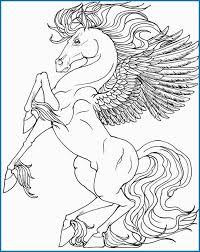 Unicorn Coloring Pages Adults Lovely Baby Pegusus Free Colouring