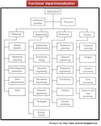 Publix Org Chart Functional Departmentalization Advantages And Disadvantages