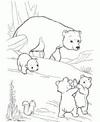 Small Picture Get This Free Polar Bear Coloring Pages for Kids yy6l0