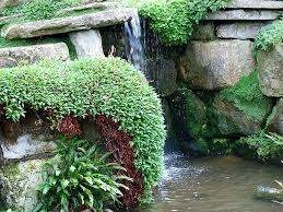 Rock Garden Water Feature ...