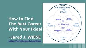 Find Your Career How To Find The Best Career With Your Ikigai The 4 Ps Of