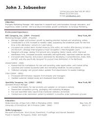 cv format word doc it professional resume template word professional cv template word