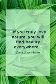 Love Quotes For Her In Bengali Ffdforoglobalorg