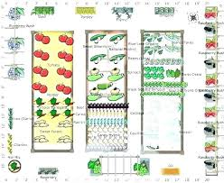 4x8 raised bed vegetable garden layout raised bed gardening layouts raised vegetable garden layout raised bed