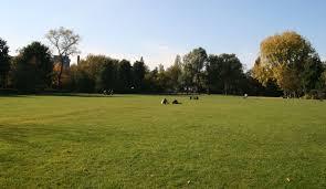 grass field. File:Oosterpark Field Of Grass.JPG Grass