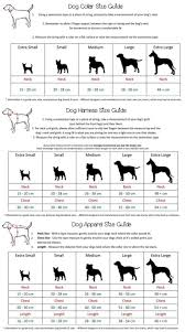 American Bulldog Puppy Growth Chart 40 All Inclusive Golden Weight Chart