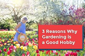 you don t have to go to your retirement before starting a gardening project anyone can create a beautiful garden in the backyard or even on the roof