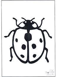 Lieveheersbeestje 1 Kleurplaat Insecten
