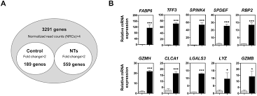Nucleotide-Mediated Spdef Modulates Tff3-Mediated Wound Healing And ...