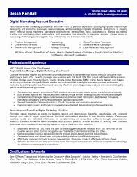 Brand Manager Sample Resume Luxury Collection Solutions Sample