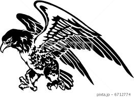 猛禽類 鷲 飛ぶ 鳥のイラスト素材 Pixta